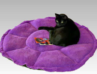 Jackson Galaxy Comfy Clamshell Bed from Petmate