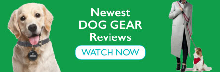 Newest Dog Gear Reviews