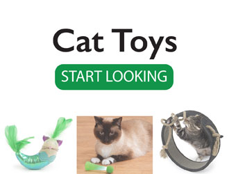 All Cat Toys