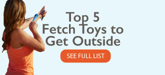 Top 5 Fetch Toys