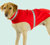 Reflective Weatherproof Dog Jacket