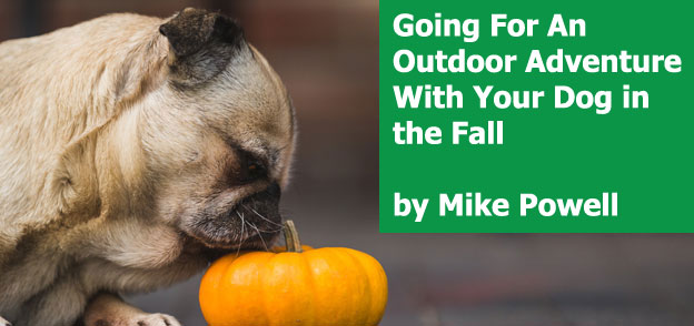 Mike Powell - Going For An Outdoor Adventure With Your Dog in the Fall