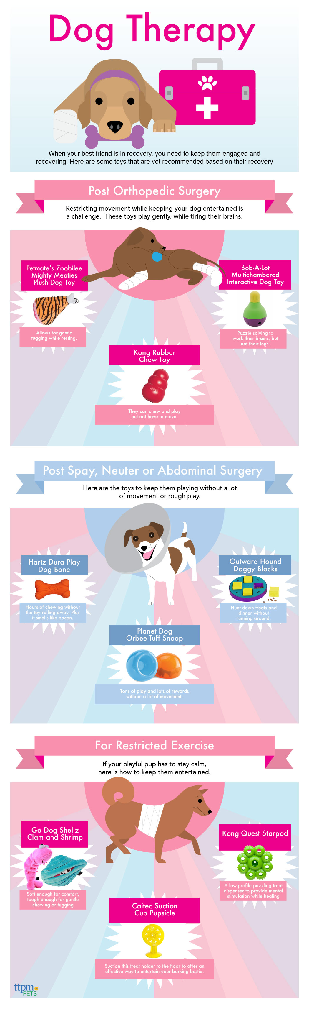 The Best Toys for Dogs Recovering from Surgery