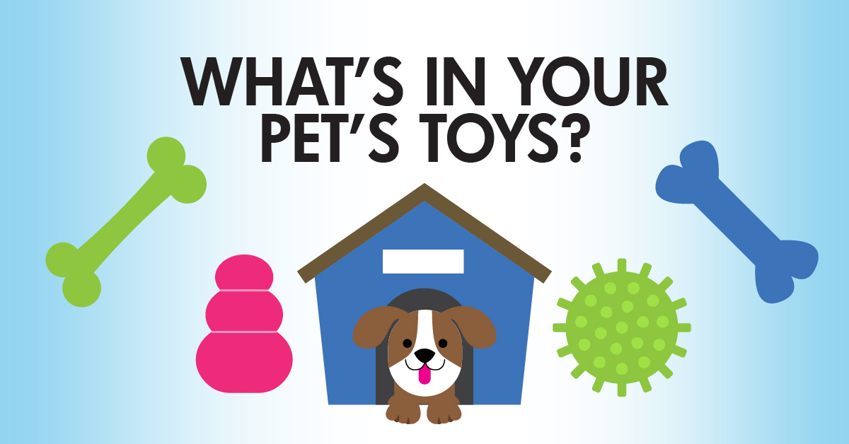 Do You Know What's In Your Dog's Toys?