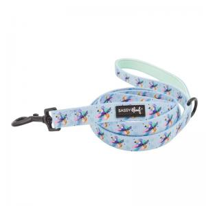 Sassy Woof Leashes and Harnesses
